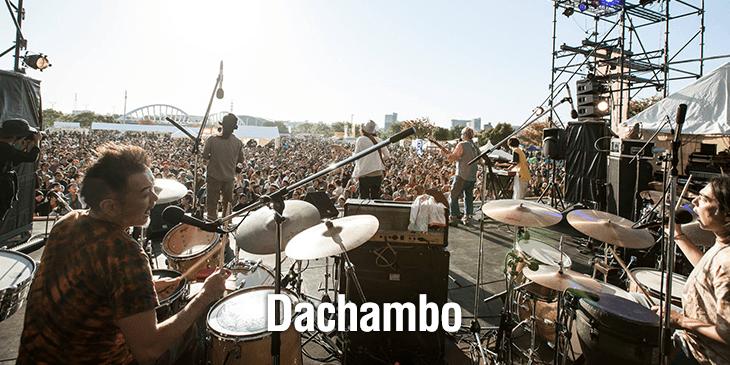 info_dachambo