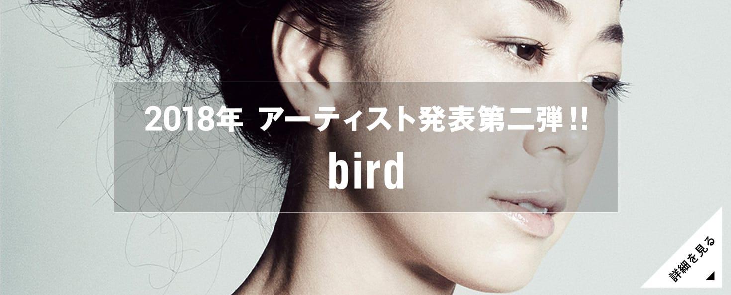 出演者第二弾発表!bird